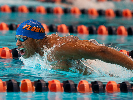 Swimming pictures University of Florida NCAA Swimming champion Shaune Fraser swims the 100 fly against the University of Virginia Swimming team
